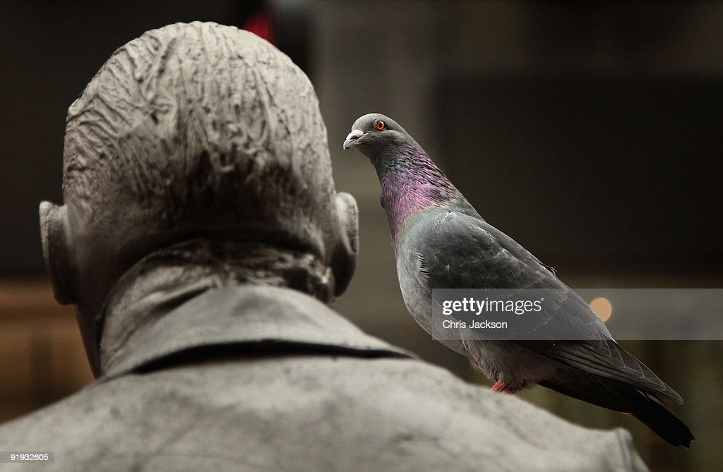 A pigeon sits on the shoulder of a street performance artist on October 15, 2009 in Dublin, Ireland. Dublin is Ireland's capital city, located near the midpoint of Ireland's east coast, on the River Liffey. It is a vibrant city with a thriving music scene and has been voted one of the top 25 cities of the world to live in. Irish President Mary McAleese signed the European Union's Lisbon treaty today, two weeks after voters approved the Lisbon Treaty in a controversial referendum.