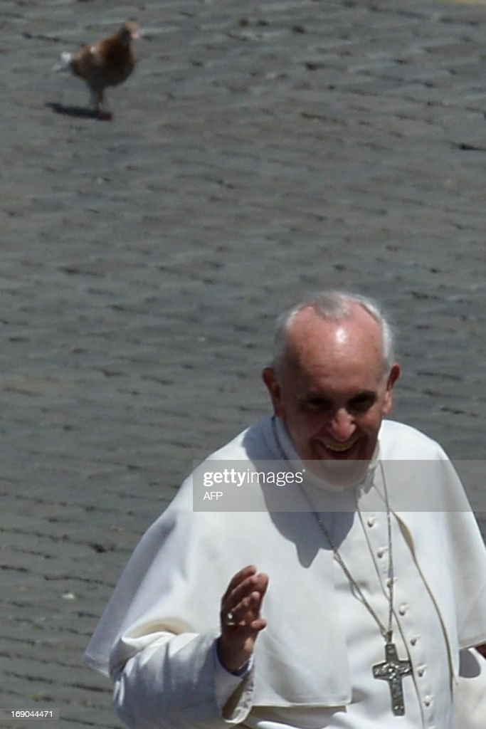A pigeon stands past Pope Francis while he blesses faithful as he leaves in his papamobile after the Holy mass with the ecclesial movements for Pentecost Sunday on May 19, 2013 at St peter's square at the Vatican.
