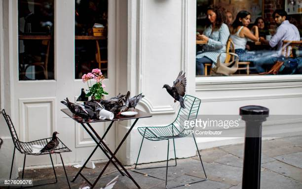 Pigeons descend on empty plates left by customers outside of a coffee shop at Portobello Road Market in the Notting Hill district of west London on...