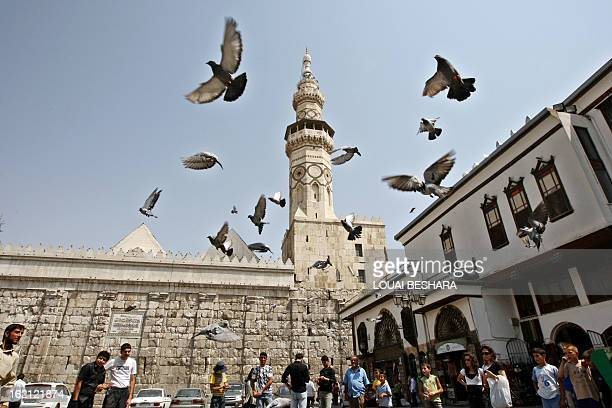 Pigeons fly outside Omayyad Mosque in Damascus on September 1 2008 Muslims around the world this week begin the fasting and feasting month of Ramadan...