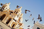 Pigeons flying in front of Cathedral