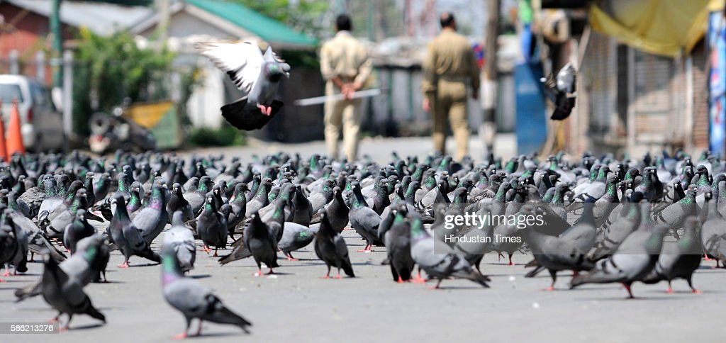 Pigeons sit on a road as policemen walk past outside the shrine of Hazratbal during curfew on August 5 2016 in Srinagar India More than 50 people...