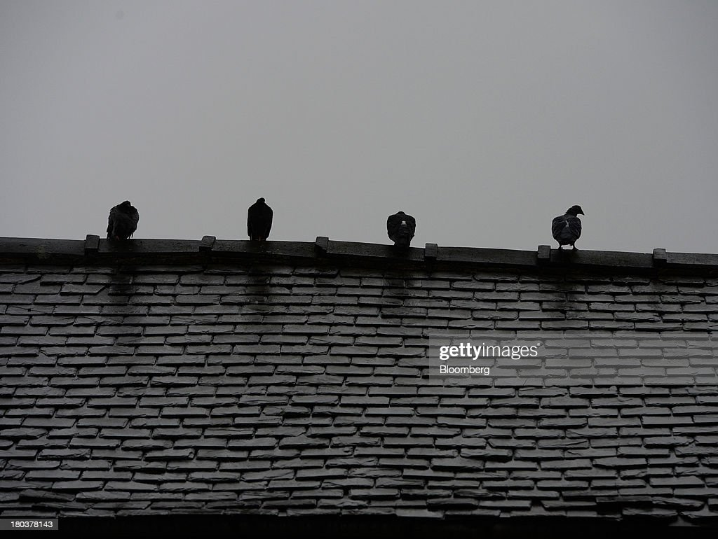 Pigeons stand on the roof tiles of a terraced residential property as rain falls in Newcastle-upon-Tyne, U.K., on Wednesday, Sept. 11, 2013. U.K. house prices rose for a seventh month in August and will probably continue to increase through the rest of the year, according to a report by Halifax. Photographer: Nigel Roddis/Bloomberg via Getty Images