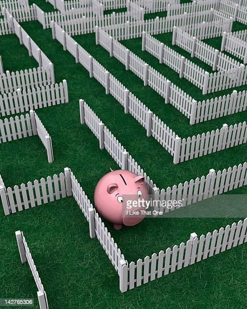 Piggy Bank lost walking in a picket fence maze