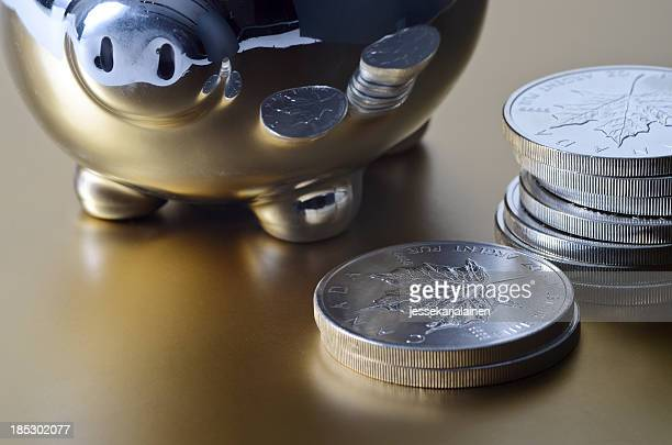 Piggy bank silver savings