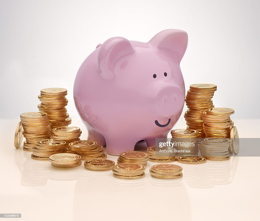 Piggy bank surrounded by gold coins : Stock Photo