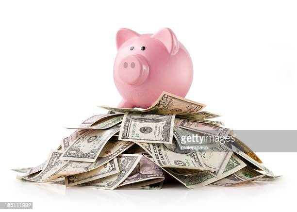 Piggy bank with dollars banknotes
