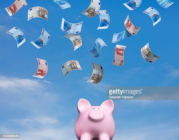 Piggy looks up for Euros