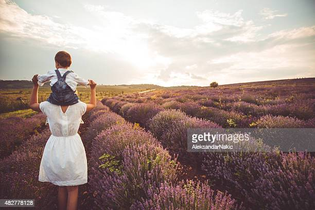 Huckepack nehmen Sie im Lavendel Feld