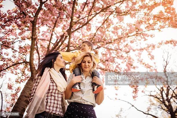 ピギーバックでの桜の木