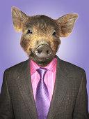 Piglet dressed business man