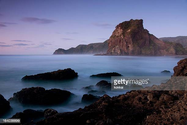 Piha Beach - Lion Rock