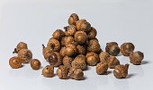 A pile of acorns on a white background