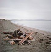 Pile of Driftwood along Shoreline
