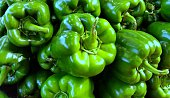 A pile of green bell peppers