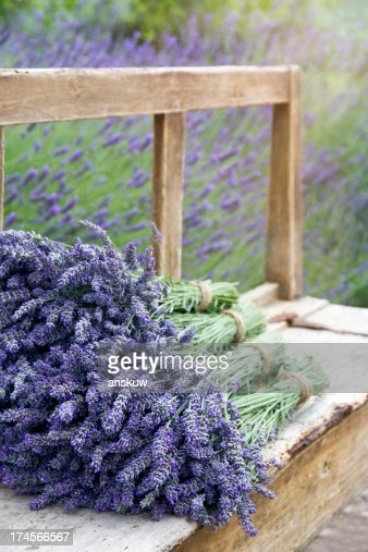 Pile of lavender bouquets on a wooden bench : Stock Photo