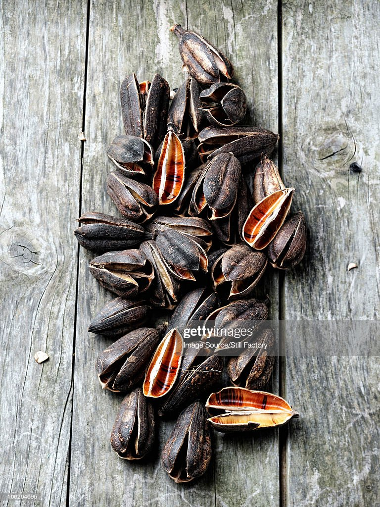 Pile of mussels on wooden table