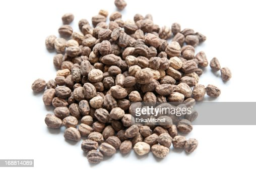 Pile of nasturtium seeds : Stock Photo