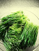 Pile Of Organic Wheatgrass In Container