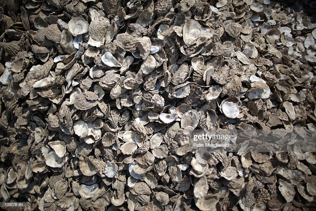 A pile of oyster shells wait for collection from outside a seafront restaurant on August 3, 2011 in Whitstable, England. Parts of southern England are experiencing high summer temperatures.