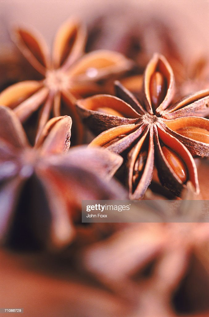 Pile of star anise, selective focus  : Stock Photo