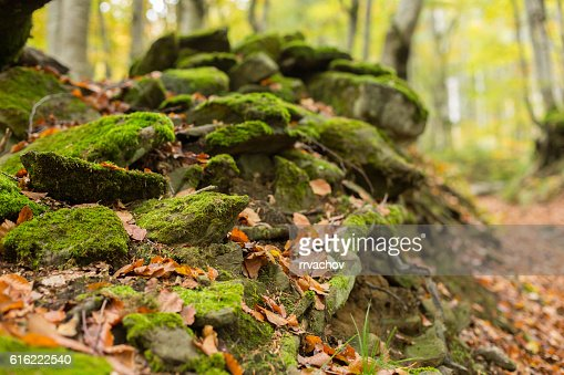 Pile of stones covered with moss : Stock-Foto