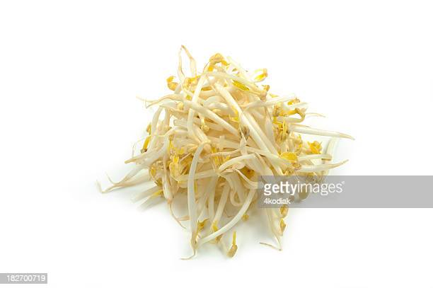A pile of white bean sprouts on a white background