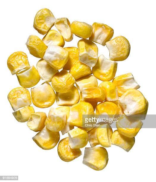 pile of yellow corn kernels