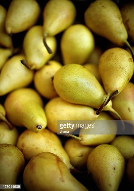 A pile of yellow small ripe pears