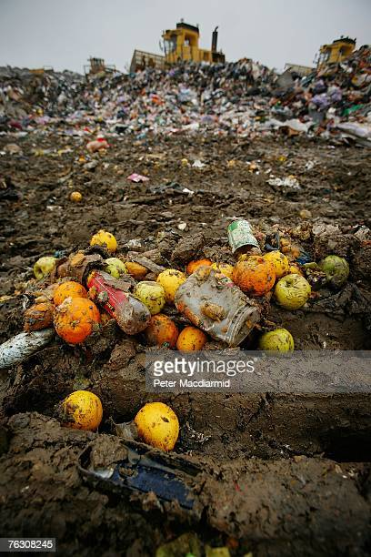 Piles of discarded fruit lie on the ground at the Shelford Landfill Recycling Composting Centre on August 23 2007 near Canterbury England The...