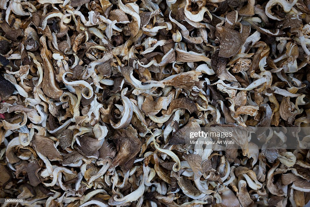 Piles of mushrooms at market, Yuanyang, China : Stock Photo