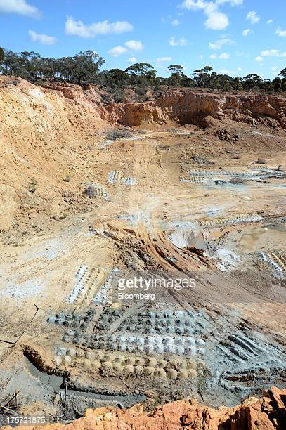 Piles of soil samples sit in rows at the Phoenix Gold Ltd Castle Hill gold project in Kunanalling northwest of Kalgoorlie Australia on Tuesday Aug 6...