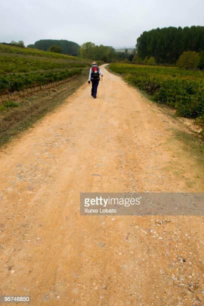 A pilgrim in a Bierzo region in the way of saint James in Castilla and Leon 11th November 2009