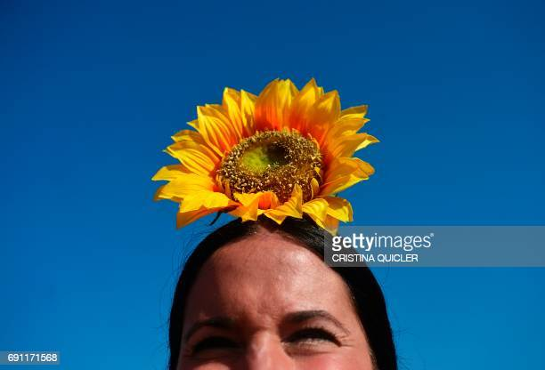TOPSHOT A pilgrim sporting a sunflower looks on as she crosses the Quema river during the annual El Rocio pilgrimage in Villamanrique near Sevilla on...