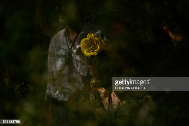 A pilgrim sporting a yellow flower in her hair is seen through vegetation near the Quema river during the annual El Rocio pilgrimage in Villamanrique...