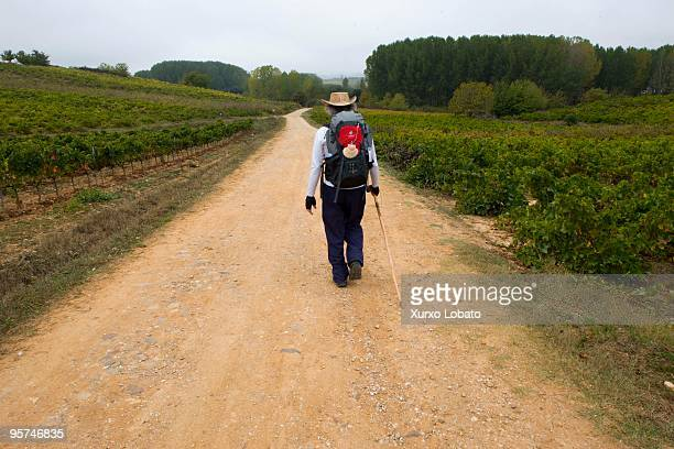 A pilgrim with the bag and shell in a Bierzo region in the way of saint James in Castilla and Leon 11th November 2009