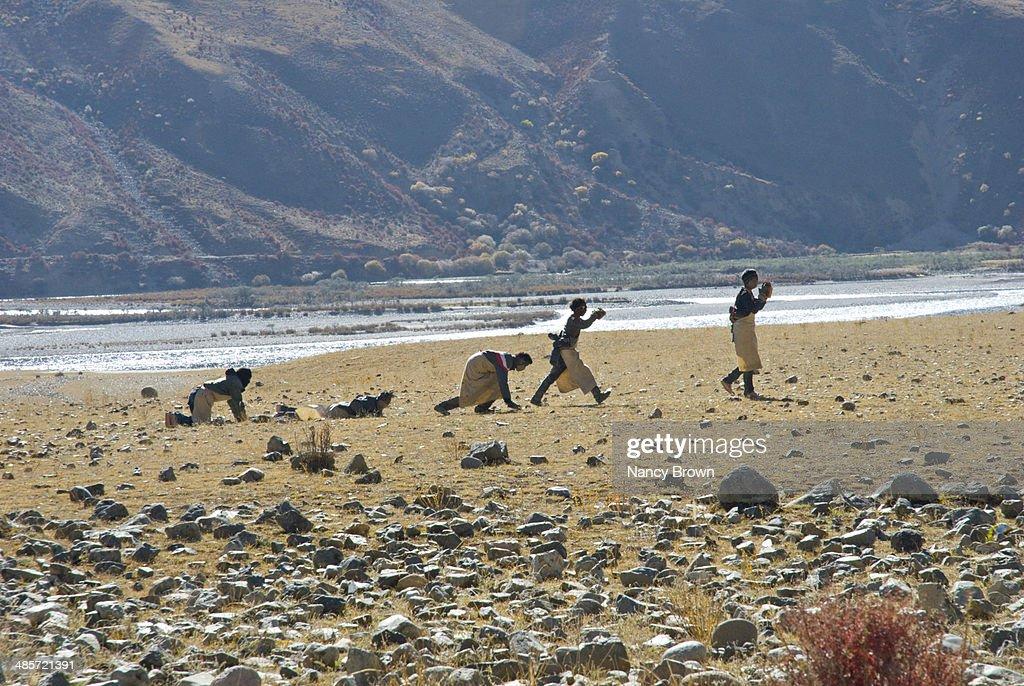 Pilgrims Making 300 Mile Pilgrimage in Tibet.
