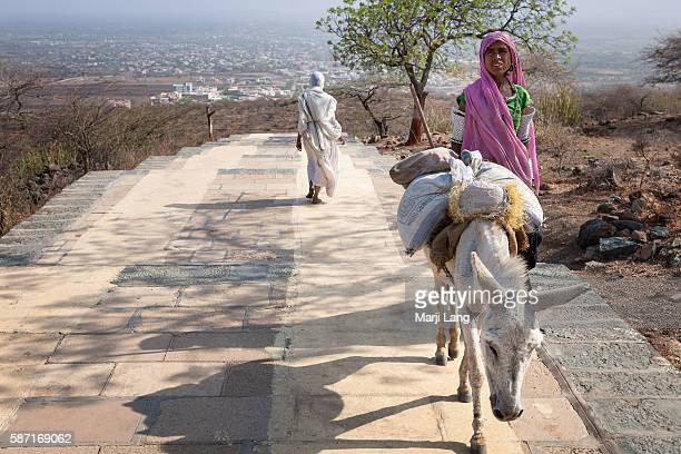 Pilgrims on Shatrunjaya hill Gujarat India Palitana is the worlds only mountain that has more than 900 temples The Palitana temples and whole...