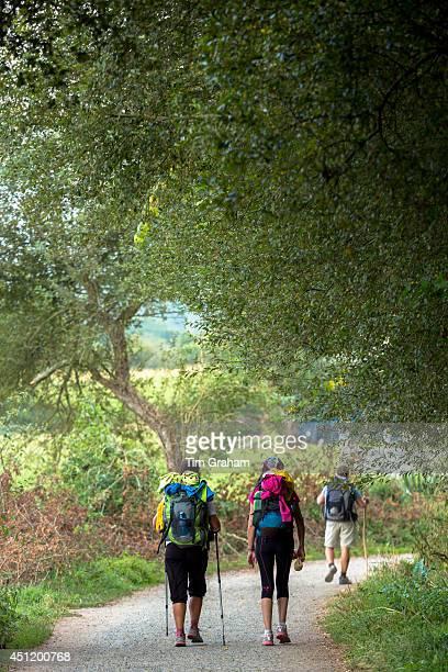 Pilgrims on the Camino de Santiago PIlgrim's Way to Santiago de Compostela in Galicia Spain