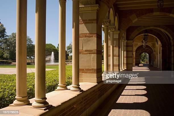 Collegiate columnas serie