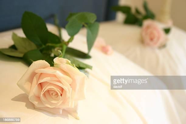 Oreiller Rose