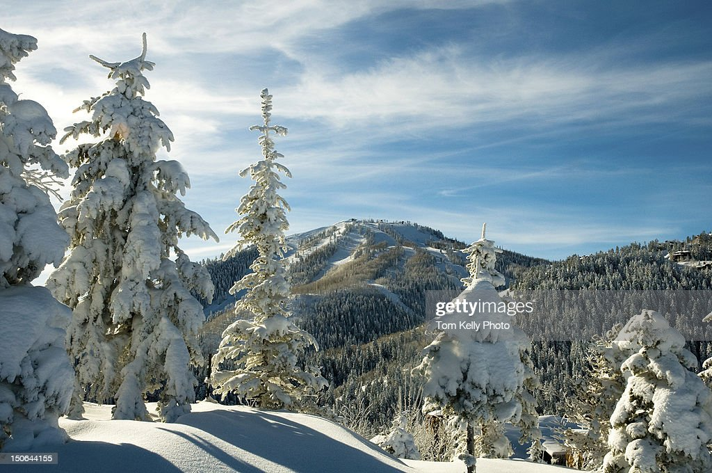 Pillows of snow at Deer Valley Resort : Stock Photo