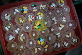 Pills are prepared for HIV/AIDS patients on February 21 2015 at Wat Phra Bat Nam Phu in Lop Buri Thailand Since beginning to care for HIV/AIDS...