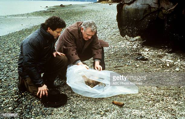 PEAKS Pilot Season One Homecoming queen Laura Palmer is found dead washed up on a riverbank wrapped in plastic sheeting in the small town of Twin...
