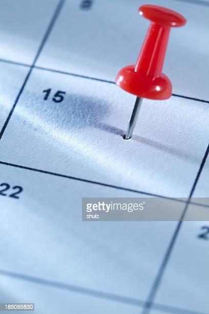 ピンのカレンダー