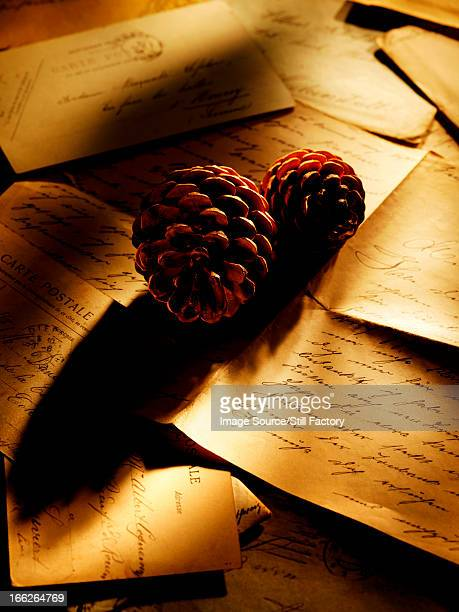 Pine cones on table of letters