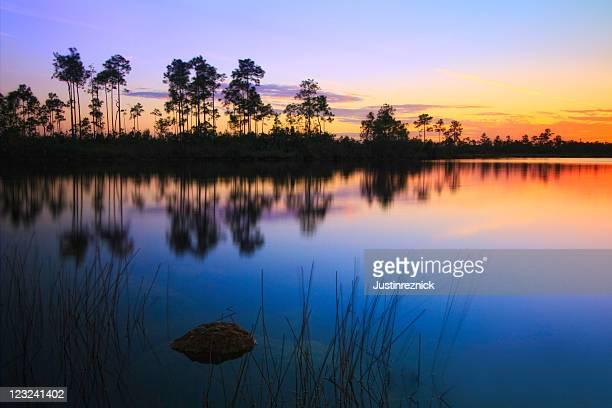 Pine Glades Lake Glow
