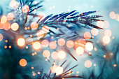 Pine tree background for Christmas Decoration