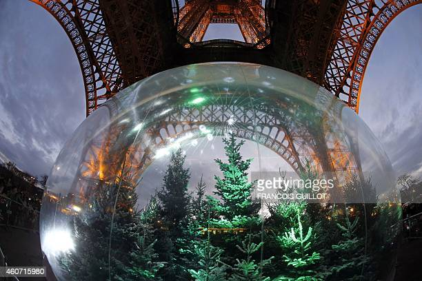 Pine trees are displayed in a giant snow globe under the Eiffel Tower in central Paris on December 20 2014 AFP PHOTO / FRANCOIS GUILLOT
