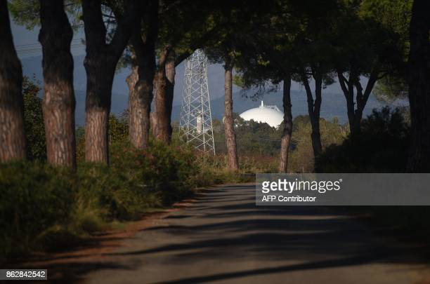 Pine trees are seen along a road near the Garigliano Nuclear Power Plant located at the outskirts of Sessa Aurunca 160km southern Rome on October 16...